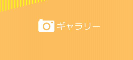 GALLERY Photo Topics!
